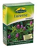 Luzerne 500g von Quedlinburger Saatgut