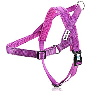 DEXDOG #1 Best Dog Harness - EZHarness by On/Off Walk in Seconds! [Purple Medium M] - Easy Quicker Step In Dog Harness Vest - Puppy No Pull Reflective Mesh Handle Adjustable Training