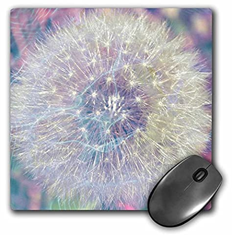 3dRose LLC 8 x 8 x 0.25 Inches Mouse Pad, Making a Wish Vision- Pastel Dandelion- Flowers