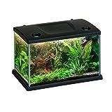 Acquario CLEO in vetro colore Nero per pesci rossi completo 15 LT