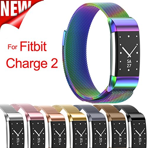 Tolulu VARIOUS Luxury Milanese Magnetic Loop Band Strap SS Stainless Steel Wrist Bands Bracelet For Fitbit Charge 2 Large/Small