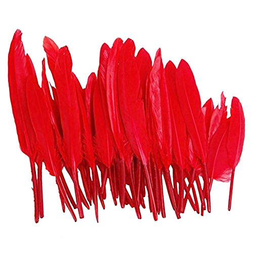 tininna-goose-feathers-home-decor-great-party-wedding-party-decorations-red-50-pcs