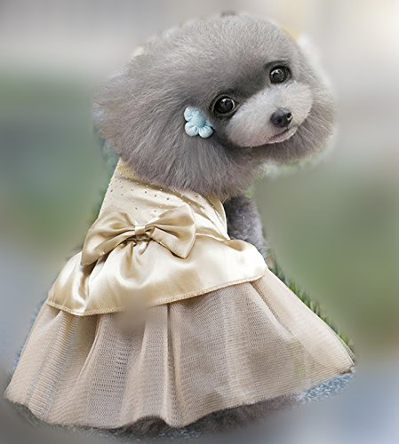 51JlZo5gPyL BEST BUY UK #1Pet dog skirt Teddy Poodle Cat Little Princess Pompon Skirt clothes (XS, beige) price Reviews uk
