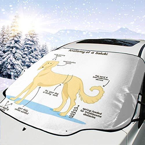 Lilyo-ltd Anatomie eines Saluki-Autowindschutzscheiben-Sonnenschutz für die meisten Autos, SUV, LKW, schützt vor Hitze und Sonne, hält Ihr Fahrzeug kühl Saluki Hat