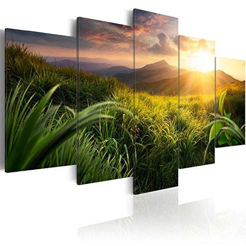 murando - Bilder 200x100 cm Vlies Leinwandbild 5 TLG Kunstdruck modern Wandbilder XXL Wanddekoration Design Wand Bild - Natur Landschaft Gebirge c-A-0095-b-m