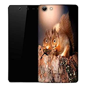 Snoogg Pair Of Squarrils Designer Protective Phone Back Case Cover For Micromax Canvas Selfie Q348