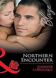 Northern Encounter (Mills & Boon Blaze) (Alaskan Heat, Book 2)