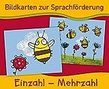 Bildkarten zur Sprachförderung: EINZAHL - MEHRZAHL - Neuauflage