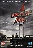 American Gods [DVD] [2017]