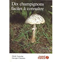 Dix champignons faciles a connaitre