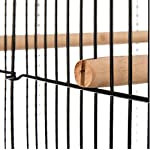 Finca Powder-Coated Metal Bird Cage - Comes Complete with Accessories and with Narrow Bar Spacing Suitable for Smaller Bird Species 8