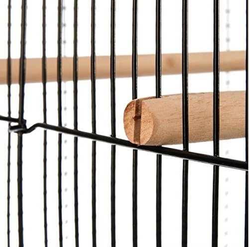 Finca Powder-Coated Metal Bird Cage - Comes Complete with Accessories and with Narrow Bar Spacing Suitable for Smaller Bird Species 2