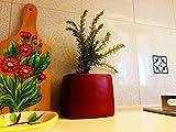 Vaso Rosso Made in Italy 100% Terracotta per Piante Grasse e Erbe Aromatiche | Vaso Portacandele Quadrato | Portapenne da Tavolo di Design | Bellissimo Decoro Casa Cucina Tavolo Scrivania