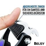 BELISY Hundebürsten/Katzenbürsten - 2er Set - perfekte Fellpflege für Hund & Katze - 5