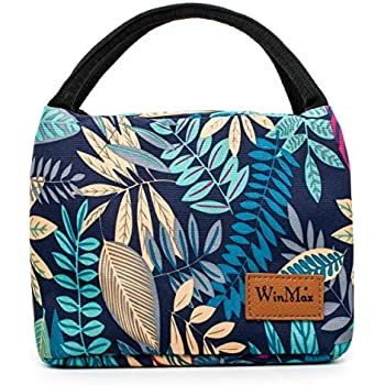 b1e013d819e8 Winmax Insulated Lunch Box Bag, Portable Cooler Bag, Reusable Lunch ...