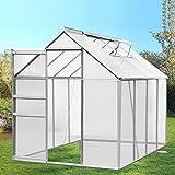 IDMarket - Serre de jardin aluminium et polycarbonate 4.75 m² 250x190x195 cm translucide