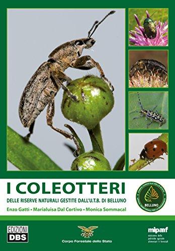 i-coleotteri-delle-riserve-naturali-gestite-dallutb-di-belluno