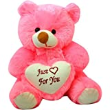 Toy King 2 Feet Sitting Soft Cute Teddy Bear With Love Heart Just For You (Pink)