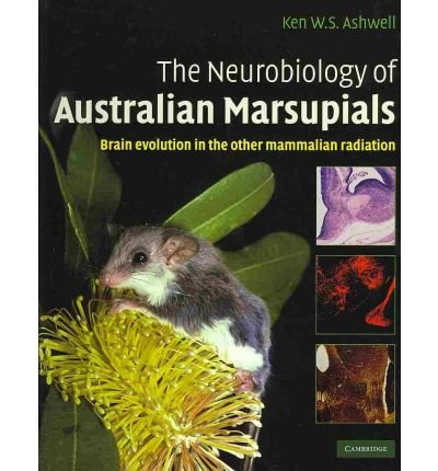 [(The Neurobiology of Australian Marsupials: Brain Evolution in the Other Mammalian Radiation)] [Author: Ken Ashwell] published on (November, 2010)