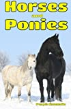 Horses and Ponies: Facts, Information and Beautiful Pictures about Horses and Ponies: Volume 3 (Animal Books for Children)