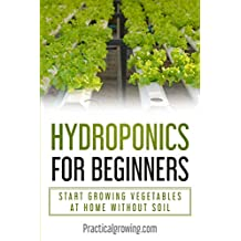 Hydroponics for Beginners: Start Growing Vegetables at Home Without Soil