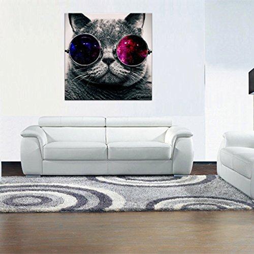 Rain queen 5050cm 1 partie animal image tableau grand format impression sur toile sur châssis bois chat lunettes de soleil