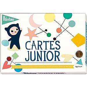 Milestone Cards - Journal et livre de naissance - Cartes souvenirs Juniors