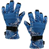 Phenovo Men Winter Sports Waterproof Motorcycle Snow Ski Gloves - Blue Printing XL