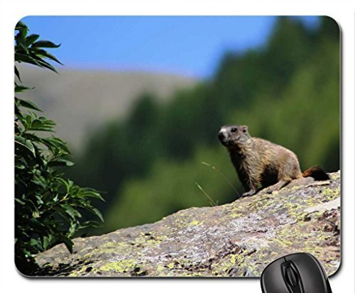 a-marmot-for-jakii-mouse-pad-mousepad