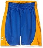 AKOA Sector Sports Shorts, Blue (Royal/Amber), Medium