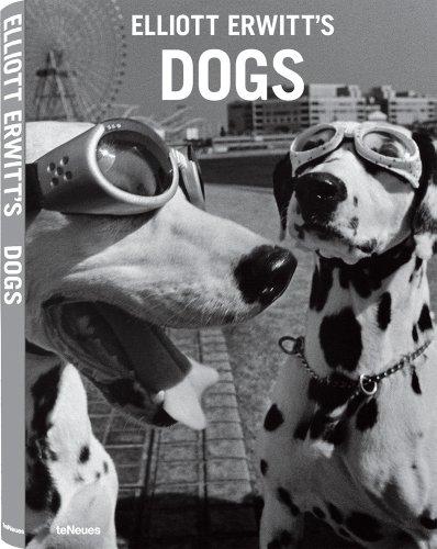 Dogs por Elliott Erwitt