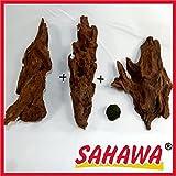 SAHAWA Wurzel,Mangrovenwurzel, Mangrove, Aquariumwurzel+ Mooskugel Gratis Aquarium, Terrarium Deko ca. 20-26cm