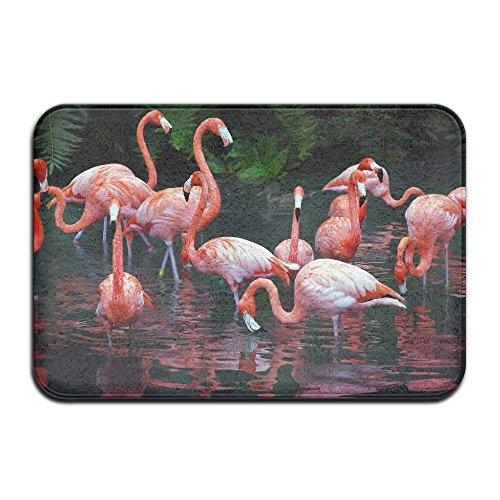 (JIEKEIO Home Door Mat Flamingo Doormat Door Mats Entrance Rugs Anti Slip 40X60cm/23.6(L) X15.7(W) inch for Indoor Outdoor)