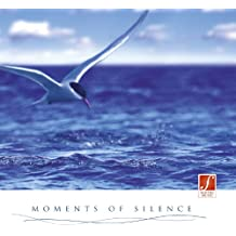 Moments of Silence : Se détendre au son de harpe, de flûte de pan, de violons, du piano [Import allemand]