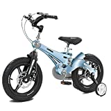 HUALQ Fahrrad Kind Fahrrad 3-6 Jahre Alt Baby Fahrrad 12 Zoll Kinderwagen Junge Mädchen Schock Fahrrad
