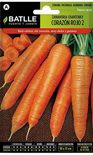 Semillas Hortícolas - Zanahoria Chantenay de Corazón rojo 2 - Batlle