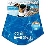 All For Paws Chill Out Ice Bandana, Large