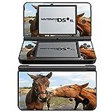 Pferde 10038, Pferde im Feld, Design folie Sticker Skin Aufkleber Schutzfolie mit Farbenfrohe Design für Nintendo DSi XL Designfolie