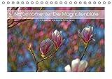 Naturmomente: Die Magnolienblüte (Tischkalender 2019 DIN A5 quer): Die Magnolie - unser schönster Frühlungsbote (Monatskalender, 14 Seiten ) (CALVENDO Natur)