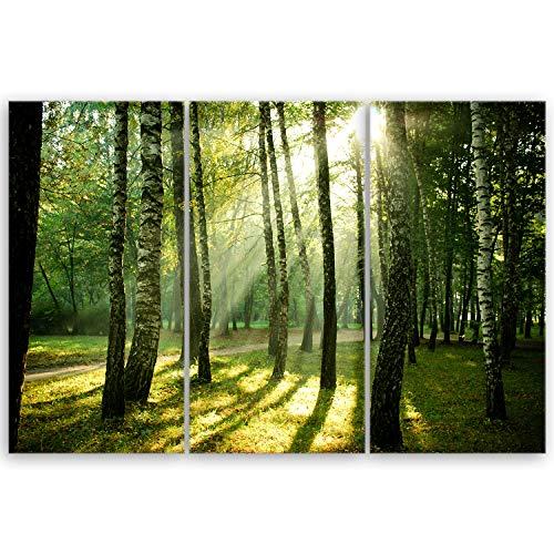 ge Bildet® hochwertiges Leinwandbild XXL Naturbilder Landschaftsbilder - Wald - Natur Blumen Wald Sonnenschein grün - 120 x 80 cm mehrteilig (3 teilig) 2212 I