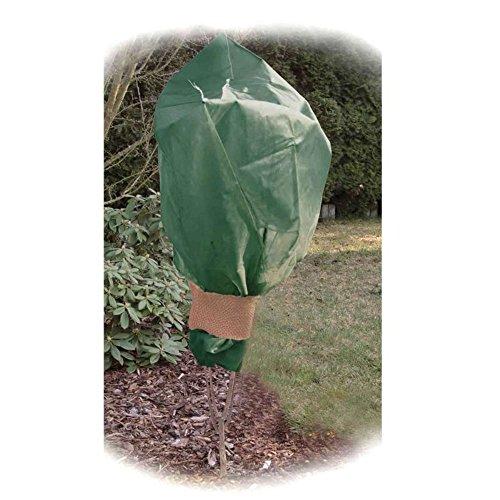 Sodipa 06760 Housse Arbuste pour Plante Vert 160 x 200 cm 60 g 2 Pièces