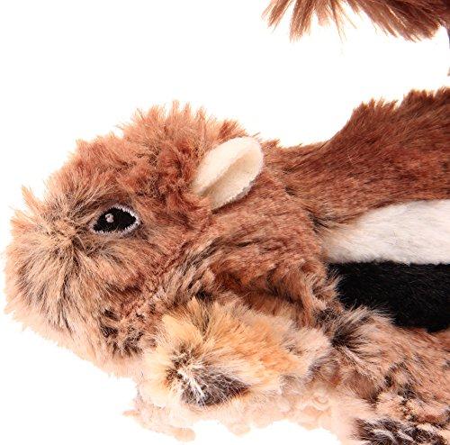 GiGwi 6259 Robustes Hundespielzeug Plush Friendz Streifenhörnchen ohne Füllung, mit doppelter Gewebelage und Quietscher, aus Plüsch - 3