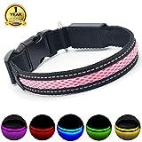 MASBRILL Leuchthalsband für Hunde aufladbar LED hundehalsband Blinkende Lichter mit USB verstellbar 3 Modells (L, Pink)