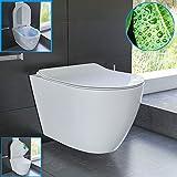 Spülrandloses Hänge WC und Nanobeschichtung aus Sanitärkeramik mit Duroplast-WC-Sitz inkl.