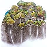 ERGEOB® 100 piezas de pavo real plumas plumaje - verde / oro, alrededor de 5-8 cm / 1-4 pulgadas de largo