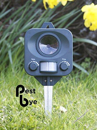 Repellente Per Gatti a Batterie - PestBye - Scaccia Gatti