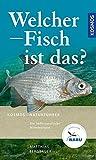 Welcher Fisch ist das? - Matthias Bergbauer