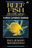 Reef Fish Identification: Florida Caribbean Bahamas