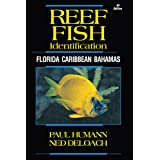 Reef Fish Identification: Florida Caribbean Bahamas (Reef Set)