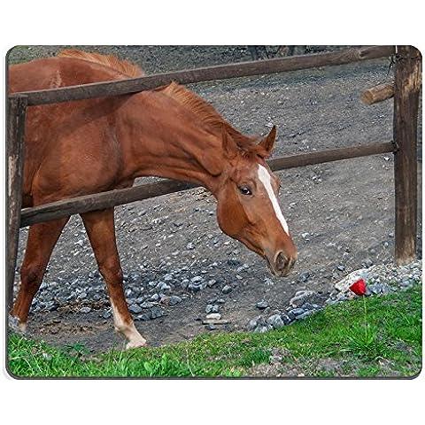 MSD Caucho Natural Gaming Mousepad imagen ID: 35088750Marrón caballo tratado de olor Flores de color rojo a través de la valla Corral